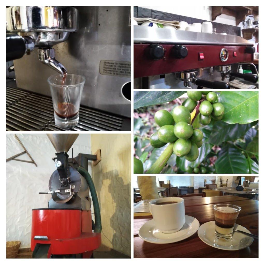 la cadena de valor del café va desde el rpoductor has el cliente final.