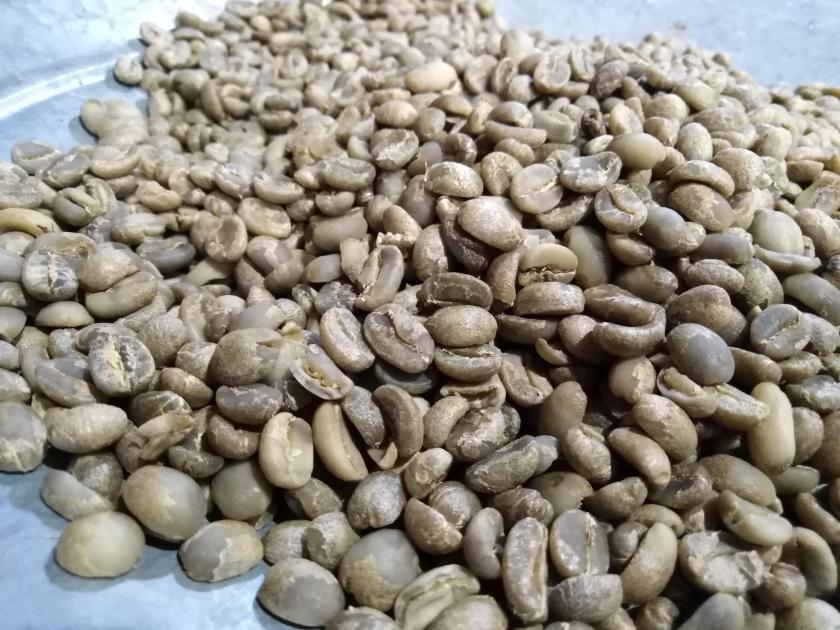 Café verde se puede comercializar al por mayor, generalmente en sacos de 46 kilos, mejor conocido como quintal.