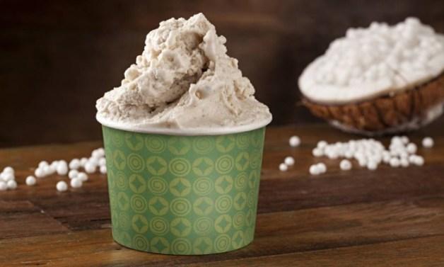 sorvete-de-tapioca-vegana-da-vero-gelato-e-cafe