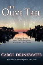 the-olive-tree-4