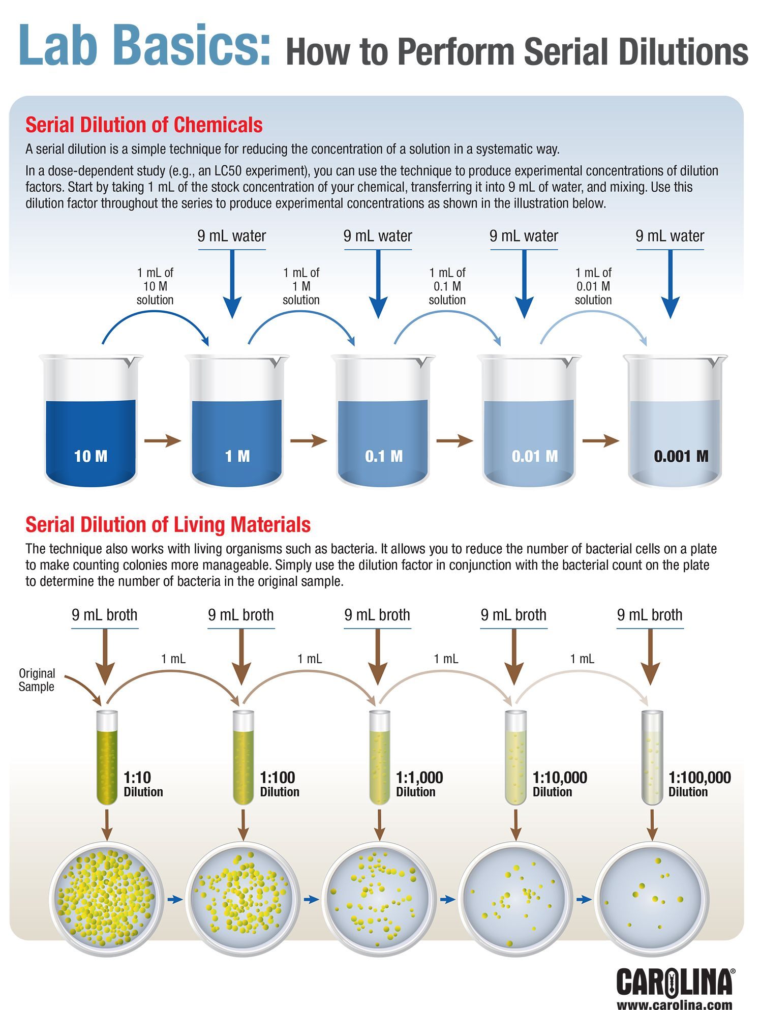 Infographic Lab Basics How To Perform Serial Dilutions