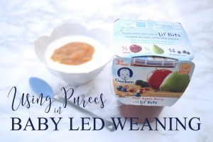 Using Purees in Baby Led Weaning