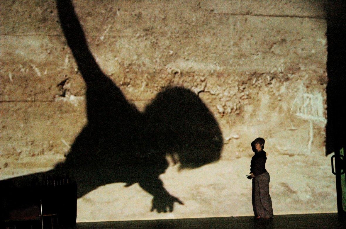 Tänzerin und riesige Menschenschatten auf der Bühne