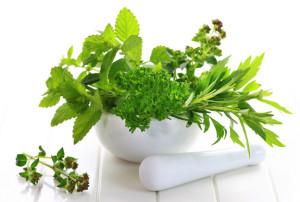 Fresh-herbs-top 5