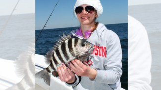 Try these four tips to catch more winter sheepshead