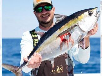 Blackfin tuna are an early season favorite for South Carolina bluewater fishermen along the Grand Strand.