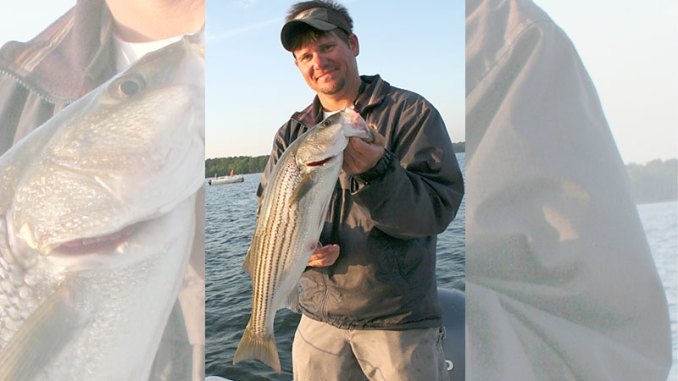 Lake Murray stripers