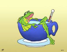 The Frog in Boiling Water