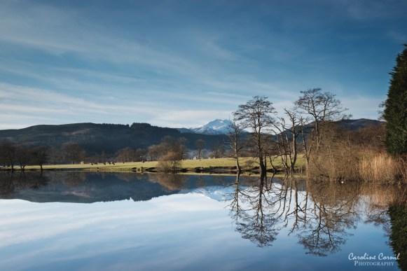 Scotland - Loch Art reflection