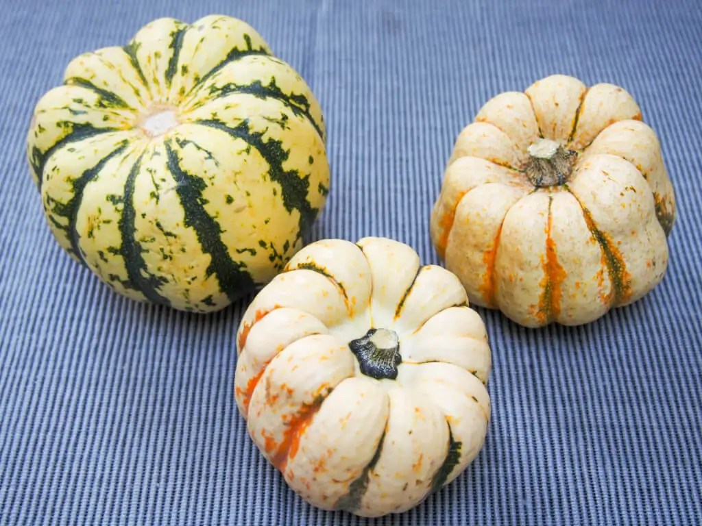 squash for quinoa stuffed squash
