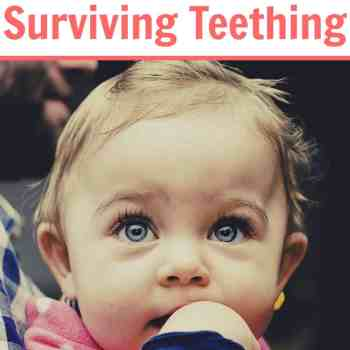 The Ultimate Guide to Surviving Teething