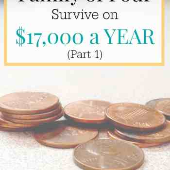 How Does a Family of Four Survive on $17,000 a YEAR (Part 1)