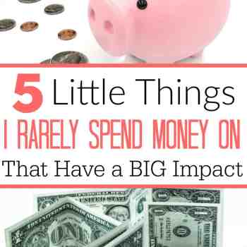 Even with a super tight budget, there is always room to cut back even more. Little things really add up and can wind up making a big impact on your budget at the end of the month! Here are the things I rarely spend money on that really add up FAST!
