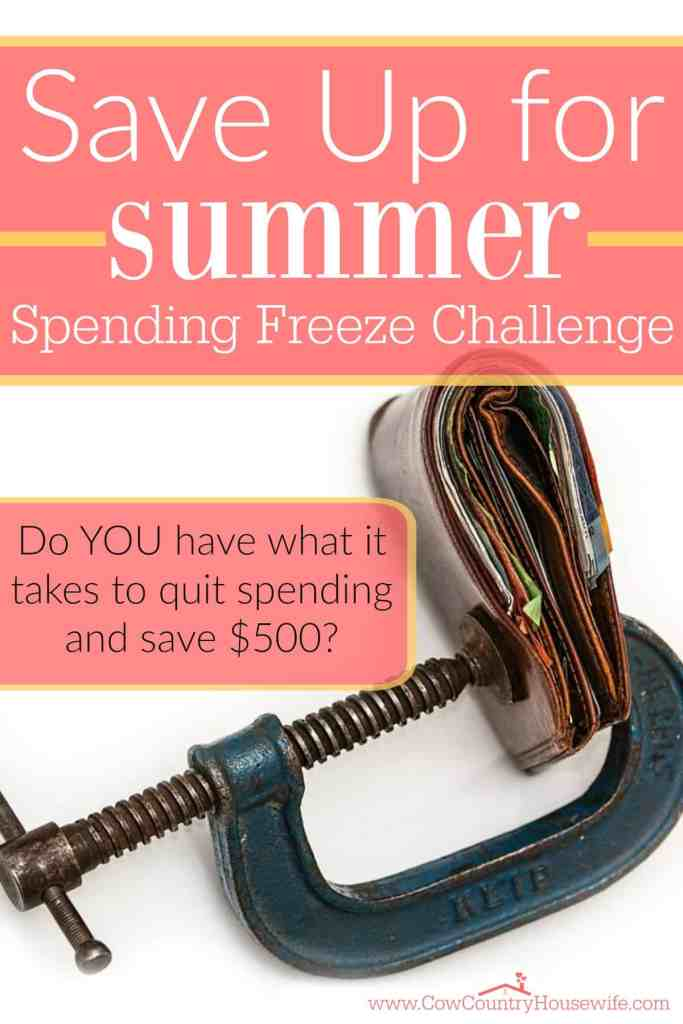 Want to pay for your vacation in cash? Build up for savings account? Or just learn how to easy it is to save $500 if you really need to? Save up for summer with a spending freeze! I can't wait to try this out!