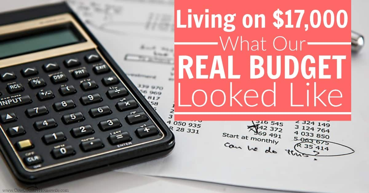 living on 17 000 what our real budget looked like