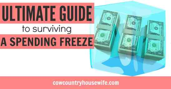 If you're looking for ways to save money fast, a spending freeze is the way to do it! Save money without working hard. Here are tricks from a spending freeze pro! Ultimate Guide to Surviving a Spending Freeze