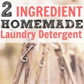2 Ingredient DIY Laundry Detergent