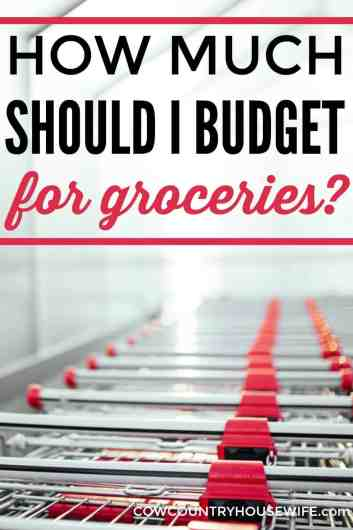 This is amazing! She shares how much you should pay for groceries and shares great tips to lower your bill. I love her ideas! She has a $75/week budget for a family of 5! She shares how to save money on food. How Much Should I Budget for Groceries?
