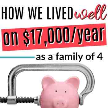How We Lived Well on $17,000 as a Family of Four