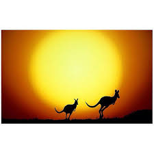 Kangaroos-and-sunset Guest Author Historical Romance Writing