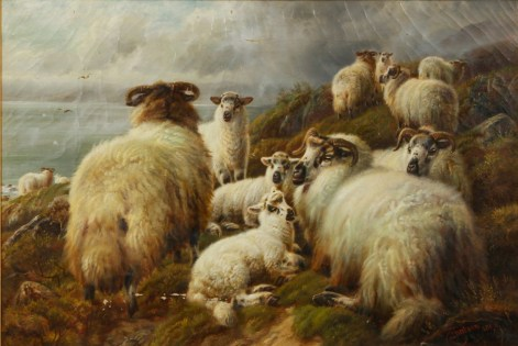 sheep Author's Blog Highlighting Historical