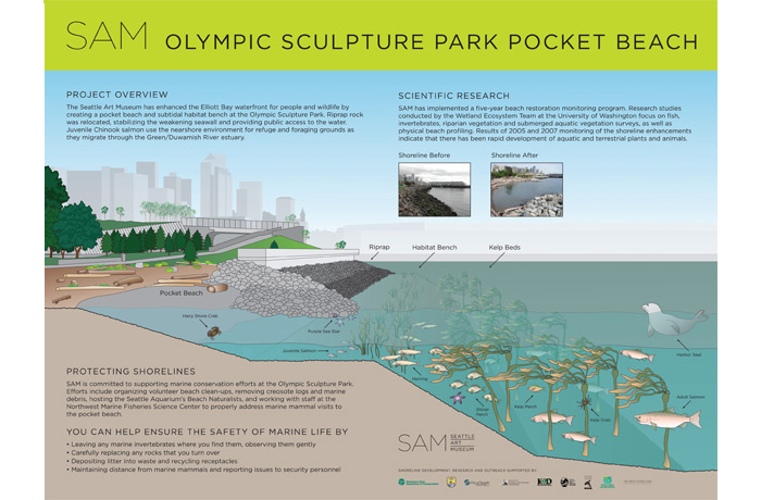Olympic Sculpture Park Pocket Beach Infographic