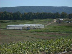 Farm Open House 2010