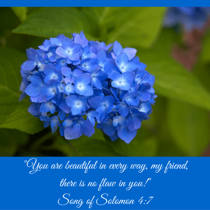 Song of Solomon Quote