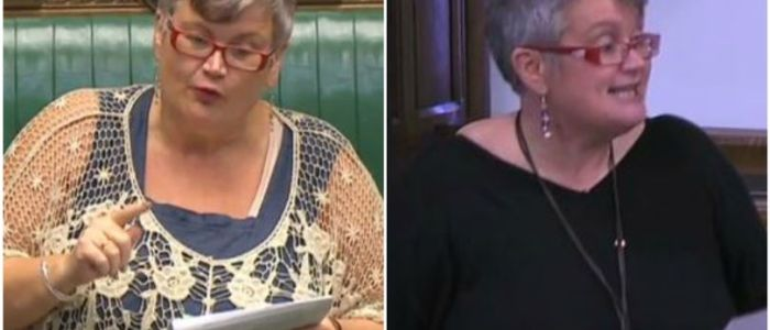 Carolyn Harris' journey from working as a barmaid and dinner lady to serving as a shadow minister
