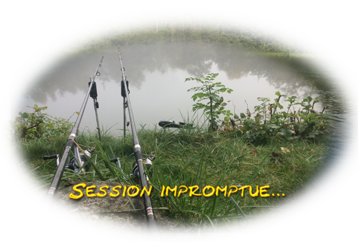 Session carpe en Eure-et-Loir