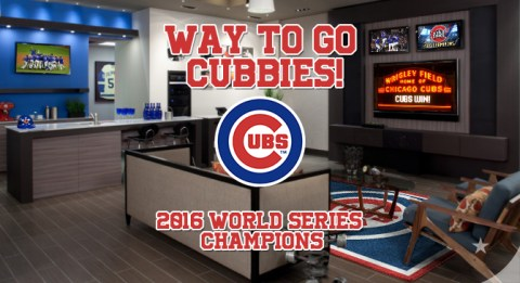 Chicago Cubs Win World Series! Way to go Cubbies!