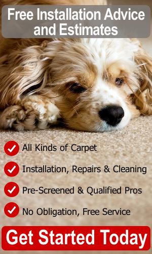 Carpet Advice and Estimates