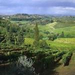 Montecucco: giovane Doc di grandi vini