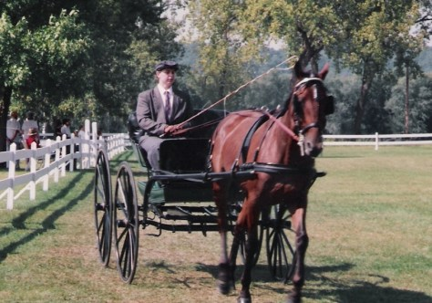 A young Mike Rider, now the Villa Louis Carriage Classic organizer, driving a Standardbred at Villa Louis.
