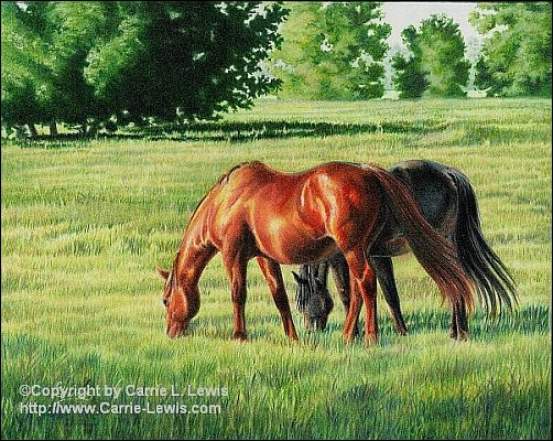 Original Colored Pencil, Afternoon Graze