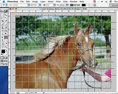Putting a Drawing Grid on a Digital Photo - Step 5b