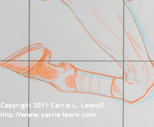 Draw Horse Legs and Feet - Detail