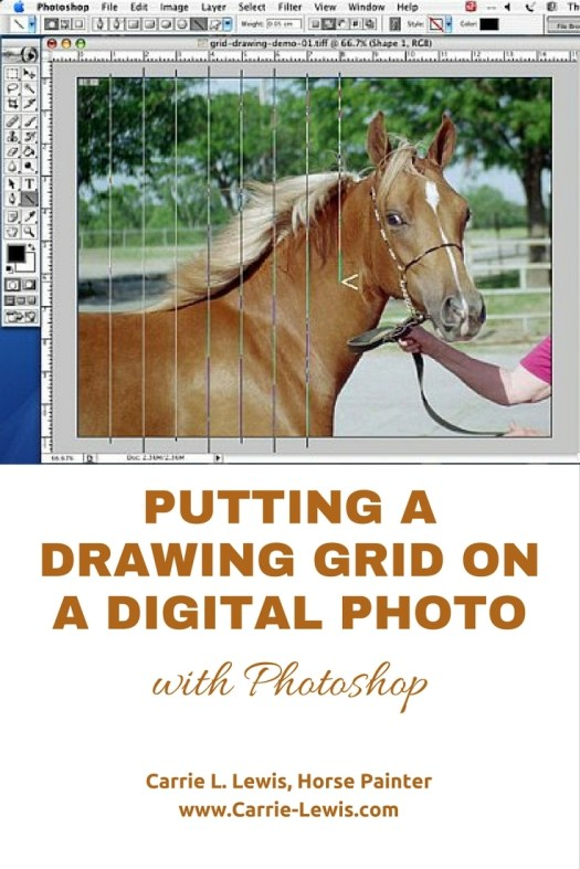 Putting a Drawing Grid on a Digital Photo