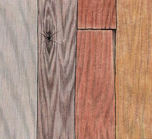 How to Draw Realistic Wood Grain Mastering Wood Grain