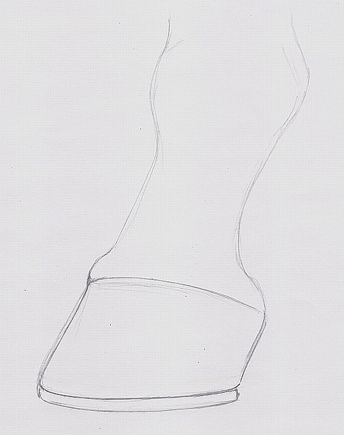 How to Draw a Horse Hoof - Step 1