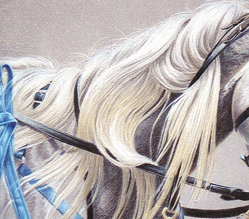 Tips for Drawing Hair in Colored Pencil 1