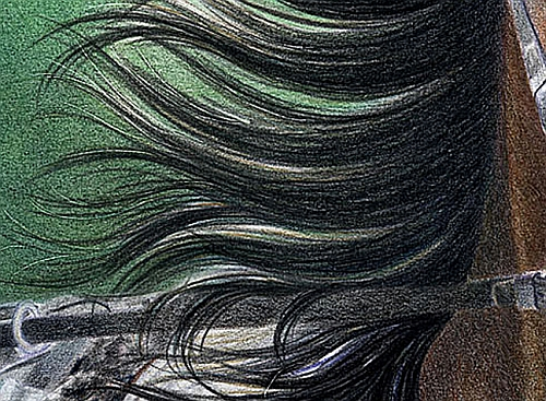 Tips for Drawing Hair in Colored Pencil 3