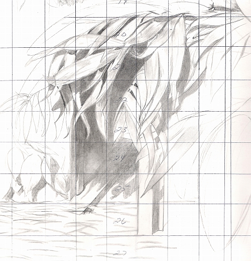 Drawing Studies - Palm Leaves Study
