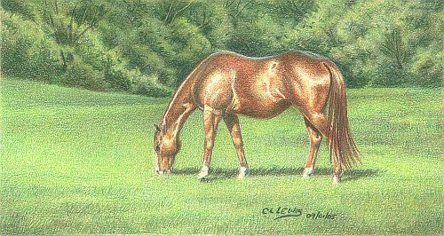 Green Pastures Finished Drawing