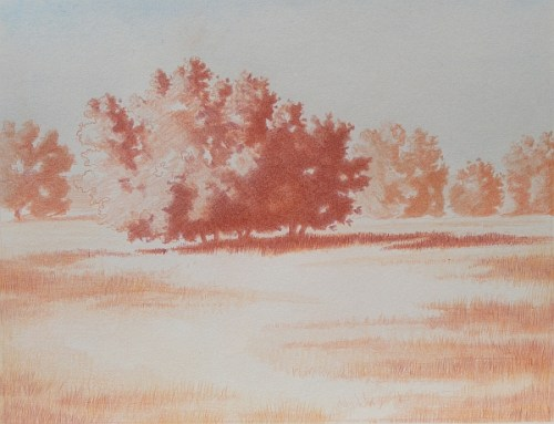Landscape Complementary Under Drawing 4