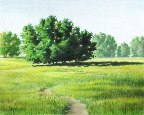 Landscape Complementary Under Drawing 5