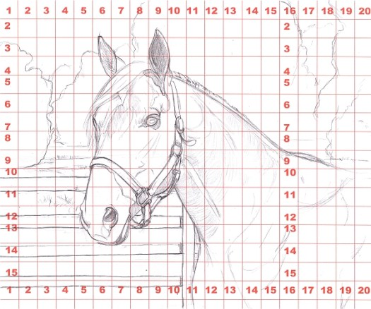 How to Draw a Horse Using a Grid Step 4