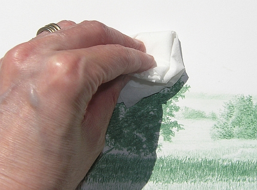 Drawing with Bath Tissue - Wipe the drawing to make sure the color is sealed