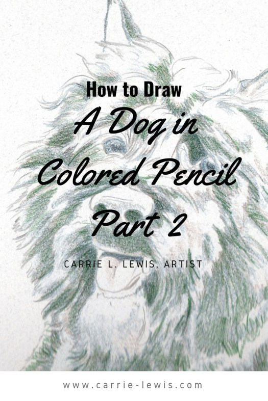 How to Draw a Dog in Colored Pencil Part 2