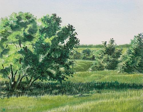 Green Lanscape 33